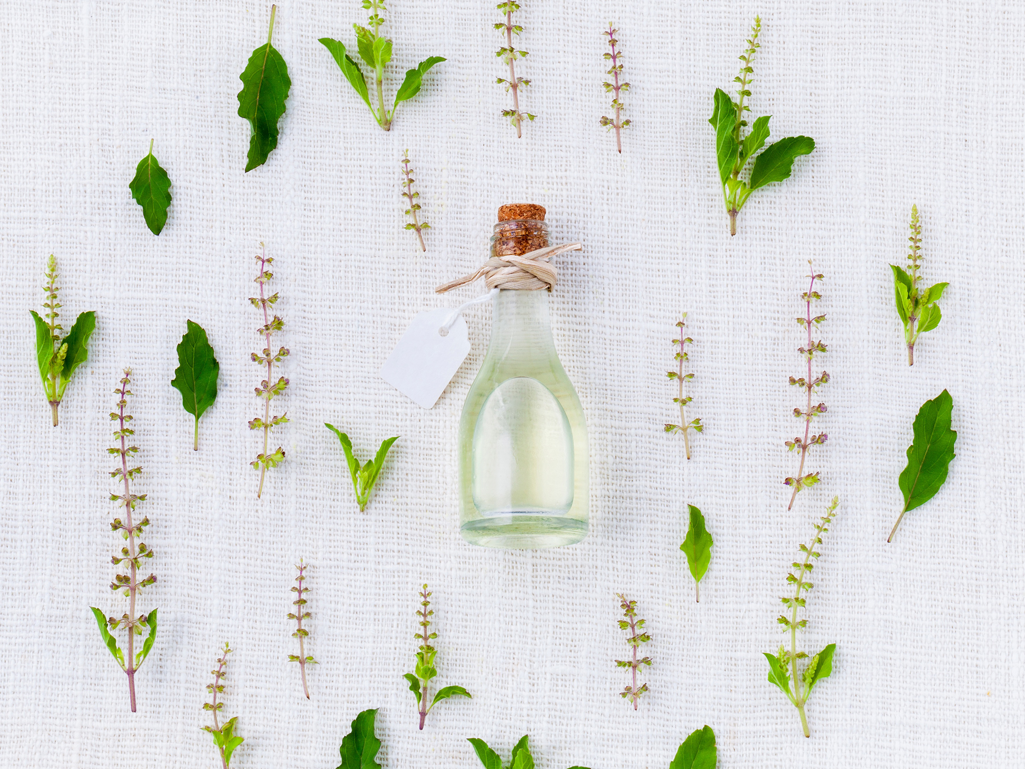 aromatherapy_services